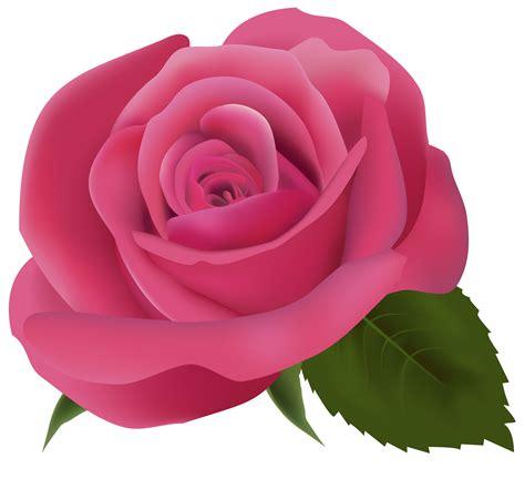 pink clip art gousicteco light pink rose clip art images