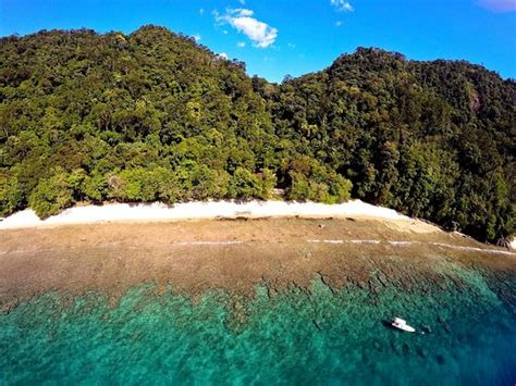 Harga Sariayu Rimba Sumatra rimba ecolodge bungus indonesia review penginapan perbandingan harga tripadvisor