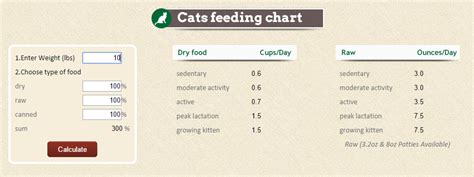 how much food should i feed my how much food should i feed my cat recipes food