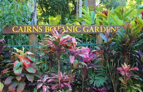 Botanical Garden Cairns Cairns Botanic Gardens Jetsetting Fools