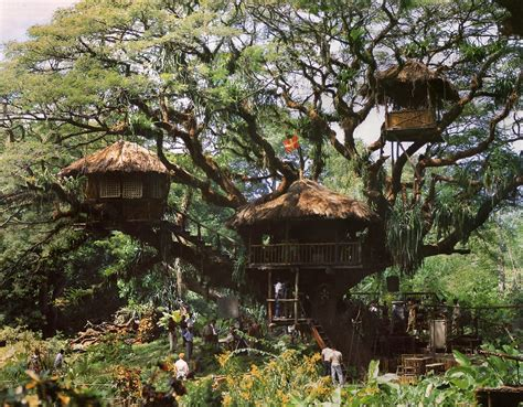 the swiss family robinson john the eclectic dad