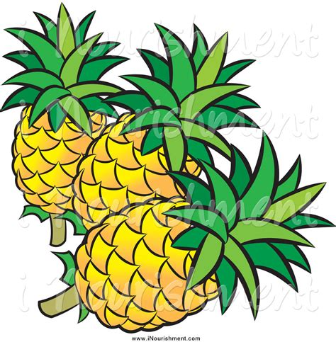 printable pineapple leaves pineapple clipart three pencil and in color pineapple