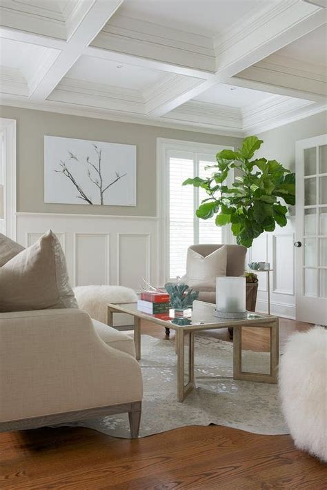 Living Room Wainscoting by Living Room Wainscoting Design Ideas
