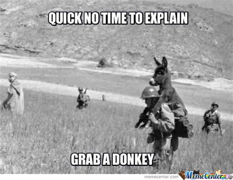 Donkey Meme - saving private donkey memes best collection of funny