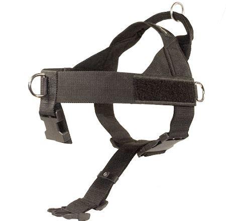 service harness service harnesses rescue harness sar search harness h17 1021
