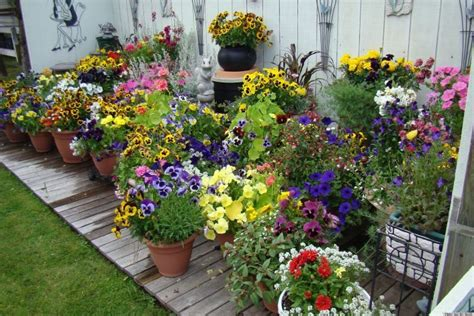 Potted Gardens Ideas 10 Pretty Container Gardens That Are For Any Home Photos Huffpost