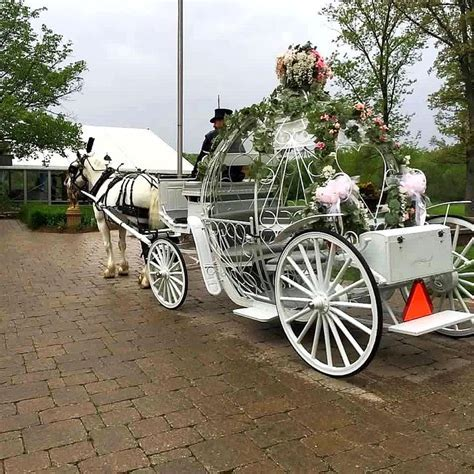 9 best Unique Wedding Transportation images on Pinterest