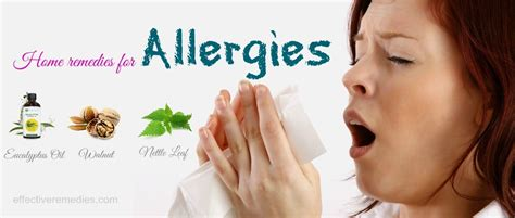 remedies for allergies 21 home remedies for allergies in children adults