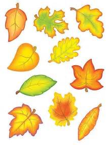 tcr 4419 fall leaves accents cut outs classroom decorative
