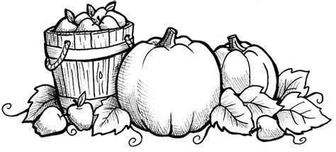 printable coloring pages pumpkin patch pumpkin patch coloring pages getcoloringpages