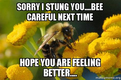 Bee Meme - sorry i stung you bee careful next time hope you are