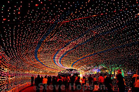 trail of lights austin flickr photo sharing