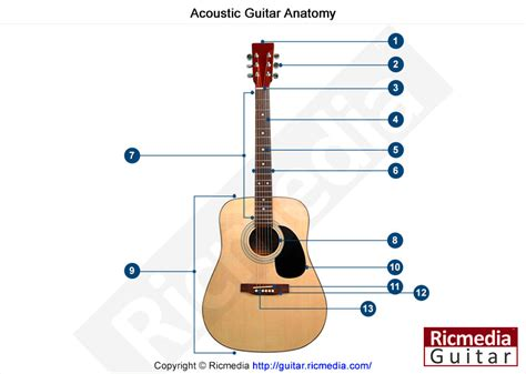 guitar free tutorial acoustic guitar free lessons