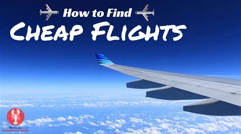 how to buy cheap flights how to find cheap flights diaries of a wandering lobster