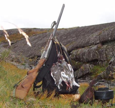 provincia di livorno ufficio caccia caccia 232 l ora della riconsegna dei tesserini venatori