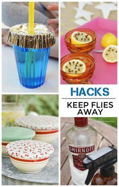 how to keep flies away from backyard 1000 ideas about keep flies away on pinterest flies away pennies and pine sol