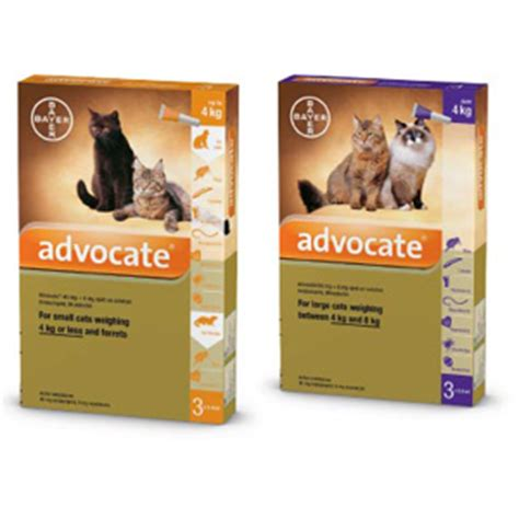 Advocate Cat Size S advocate cat fleas heartworm and worms treatment