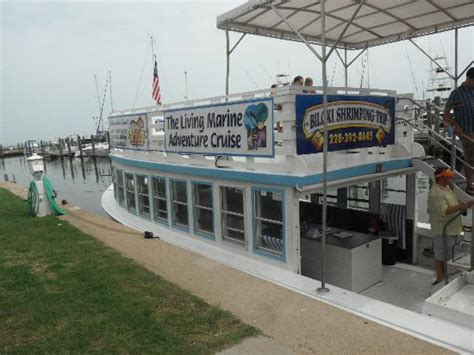 biloxi boat tours the shrimping boat picture of biloxi shrimping trip