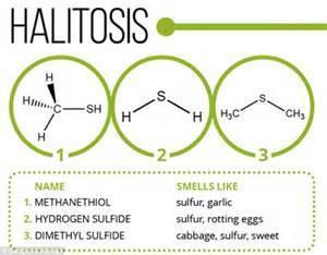 infographic explains chemistry  odours flatulence