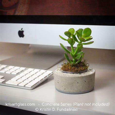 desk plants top 5 reasons for having desk plants kris art glass
