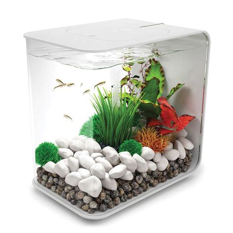 aquascape aquariums – Comment réaliser un aquarium aquascape pour un 300 litres..