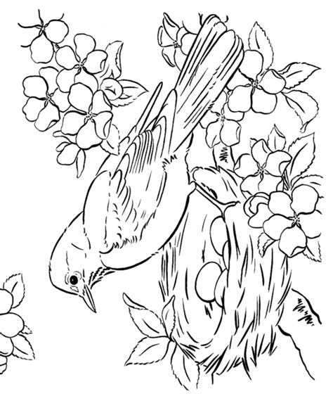 free spring covers coloring pages