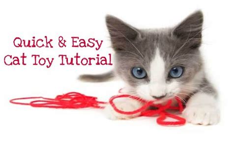 how to make toys image how to make a cat jpg