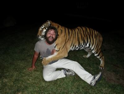 the hangover tiger in the bathroom alan hangover lmfao the hangover tiger image 136643