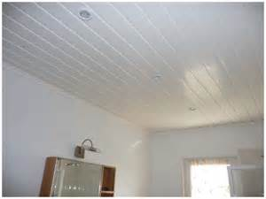 plafond lambris pvc 81440 venes budget 1 200