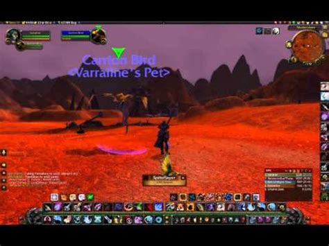 best bird taming part 2 how to the panthara of argus world of warcraft