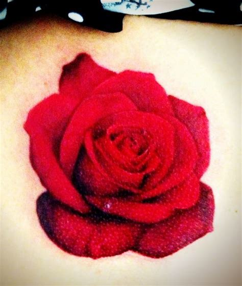 tattoo 3d rosas my newest realistic rose tattoo done by jared preslar