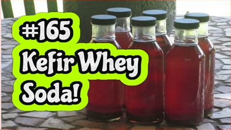 Whey Kefir vlog 165 kefir whey soda fruit leather orjanics 50nraw