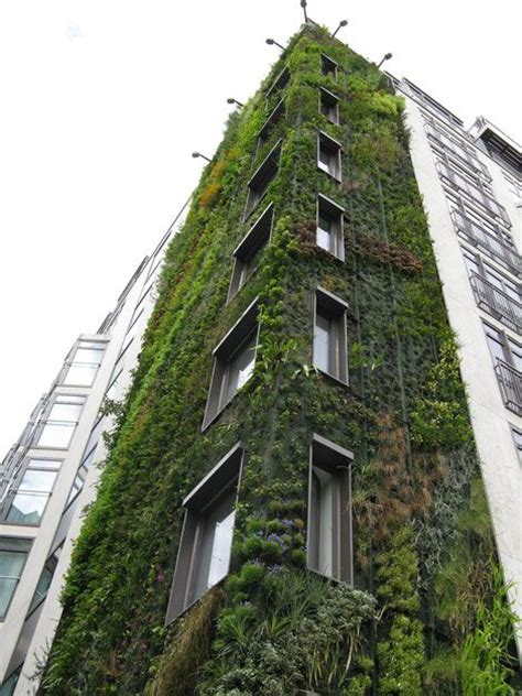 Vertical Garden Building 17 Best Images About Vertical Planting On