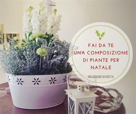 composizione giardino fai da te una composizione di piante per natale un