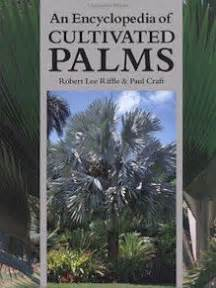 encyclopedia of cultivated palms 1604692057 palmexotica boekentips