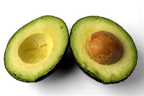 fruit l avocat avocado free stock photo domain pictures