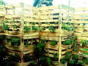 modern vegetable garden design ideas and inspiration for a modern vegetable garden sow