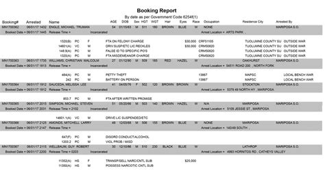 tallahassee booking report county daily booking report best free home