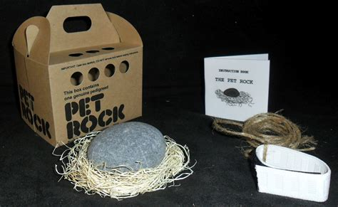 original 70s pet shop style pet rocks