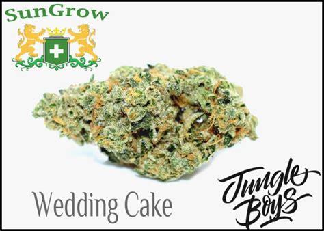 Wedding Cake Strain by Wedding Cake Strain Corner Cinema