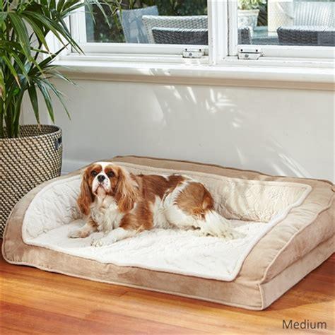 dog house lounge luxurious dog lounge house of pets