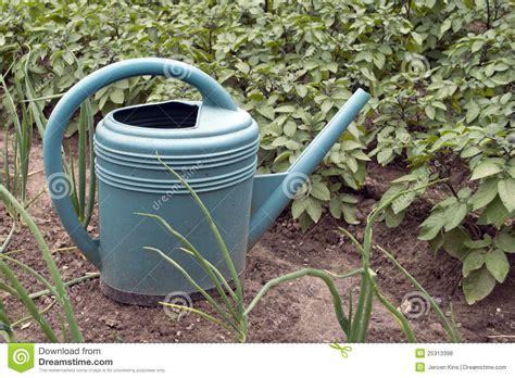 Watering Vegetable Garden Watering Can In Vegetable Garden Royalty Free Stock Photos