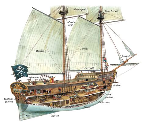 ship diagram pirate ship parts diagram pirate get free image about