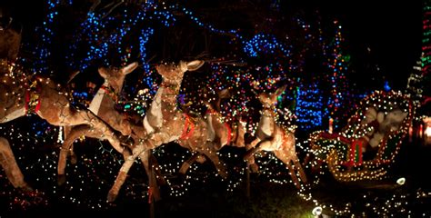 stanley park lights 9 places to see lights in vancouver