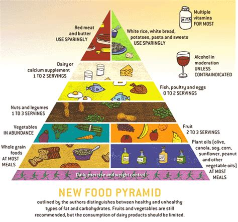 alimentazione italiana rebuilding the food pyramid 187 richard rathe md college