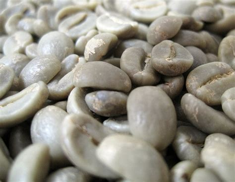 The Cost Of Beans by How Much Do Coffee Beans Cost Howmuchisit Org