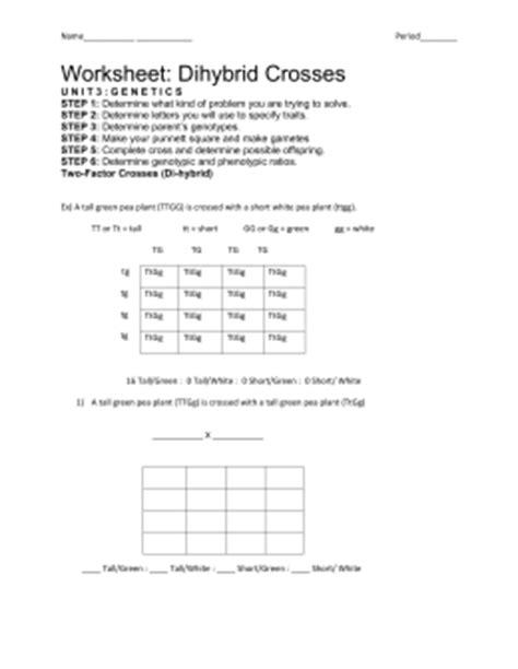 Worksheet Dihybrid Crosses Unit 3 Genetics Answer Key