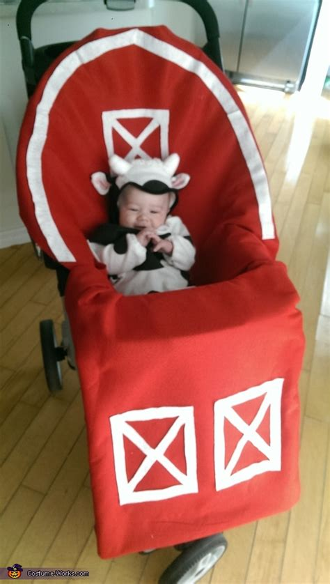 Homemade Costume Ideas For Babies