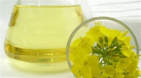 olio di colza alimentare olio di colza idee green