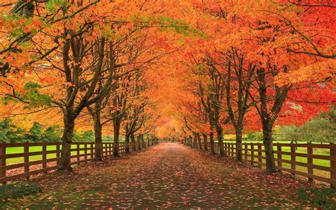 autumn landscape wallpaper 177893 autumn landscape wallpapers wallpaper cave landscape